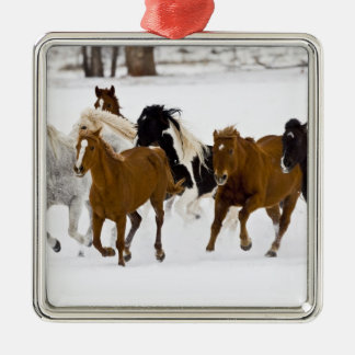 A winter scenic of running horses on The Metal Ornament