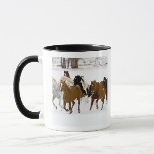 A winter scenic of running horses on The Mug
