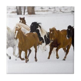 A winter scenic of running horses tile