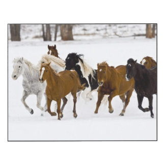 A winter scenic of running horses wood wall art