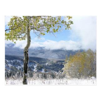 A Winter View Postcard