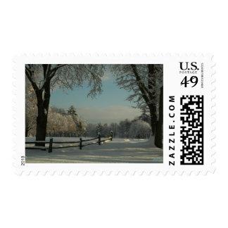 A winter wonderland lj postage stamps