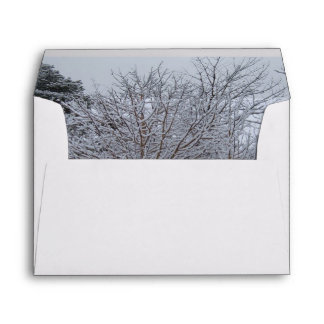 A Winter Wonderland of Snow Covered Trees Envelope