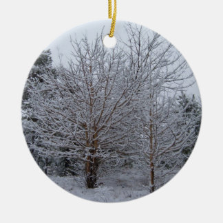 A Winter Wonderland of Snow Covered Trees Ornaments