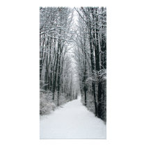 A Winters Path Card