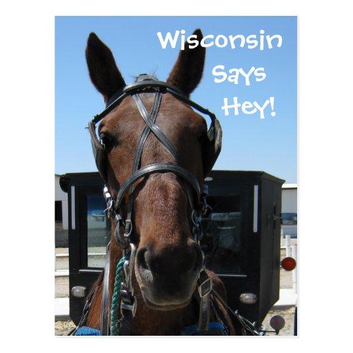 A Wisconsin Hey! Postcard