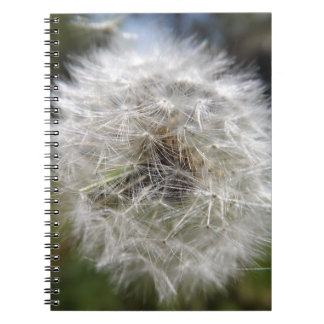 A Wish In The Making Notebook