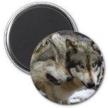 A Wolf Conversation Magnets