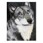 A Wolfs la mirada fija, pintando por Ben Jones Tarjetas Postales