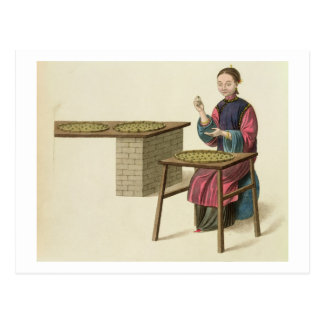 A Woman Preparing Tea, plate 21 from 'The Costume Post Card