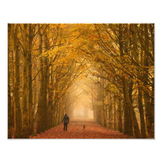 A woman walking with dog on a fall morning photo