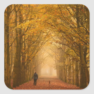 A woman walking with her dog in fall sticker