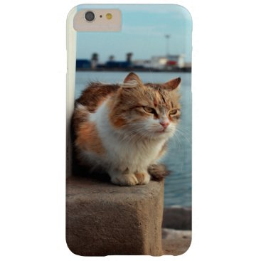 Beach Themed A Wonderful Beach Cat For IPHONE 6 Case