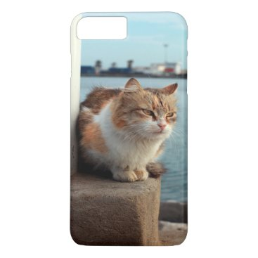 Beach Themed A Wonderful Beach Cat For iPhone 7 Case