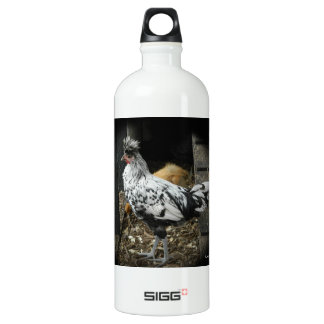 a wonderful design of a beautiful exotic bird water bottle