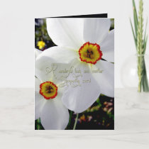 A wonderful lady and mother sympathy card