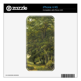A Wooded Landscape (oil on paper on panel) Decals For iPhone 4
