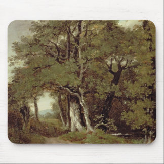 A Wooded Path Mouse Pad