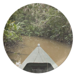 A wooden canoe made of Eucylptus tree floats in 2 Melamine Plate
