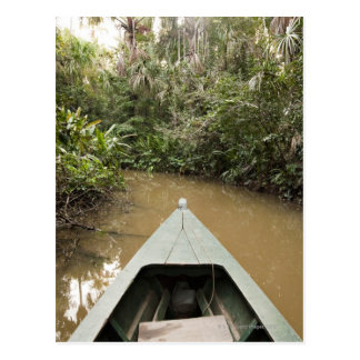 A wooden canoe made of Eucylptus tree floats in 2 Postcard