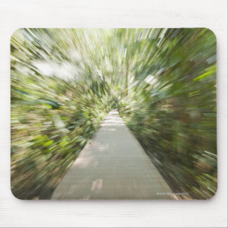 A wooden path through the rainforest in warped mouse pad