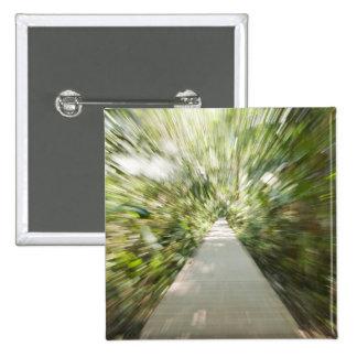 A wooden path through the rainforest in warped pinback button