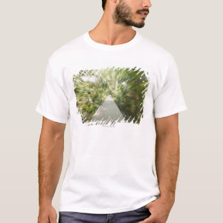 A wooden path through the rainforest in warped T-Shirt
