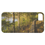 A wooden walkway in Acadia National Park Maine iPhone 5 Cover