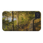 A wooden walkway in Acadia National Park Maine Case-Mate iPhone 4 Case