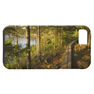 A wooden walkway in Acadia National Park Maine iPhone SE/5/5s Case