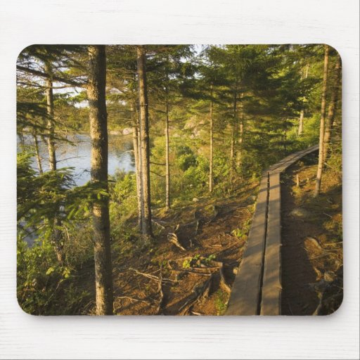 A wooden walkway in Acadia National Park Maine Mousepad