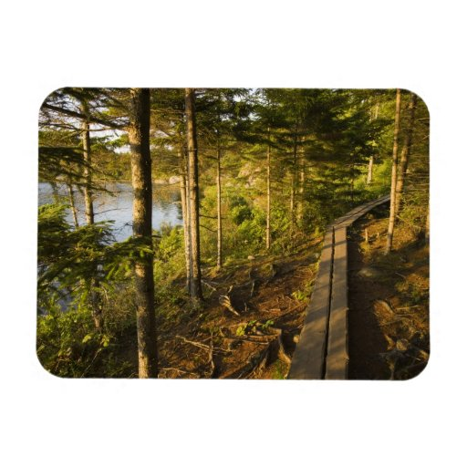 A wooden walkway in Acadia National Park Maine Flexible Magnets
