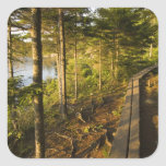 A wooden walkway in Acadia National Park Maine Stickers