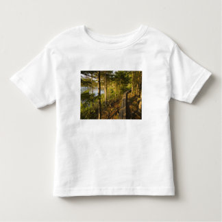 A wooden walkway in Acadia National Park Maine Toddler T-shirt