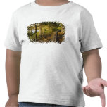 A wooden walkway in Acadia National Park Maine T Shirts