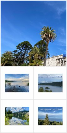 A WORLD 2 CELEBRATE: Greeting Cards