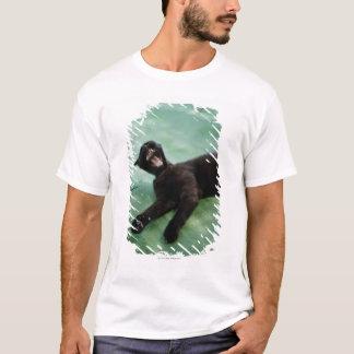 A yawning cat. T-Shirt