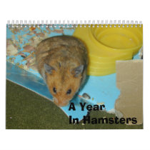 A Year in Hamsters 2010 Calendar