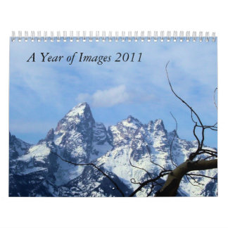 A Year of Images, 2011   by  Jenny Calendar
