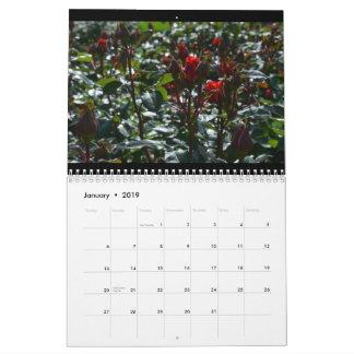 A Year of Spring: 2019 Calendar
