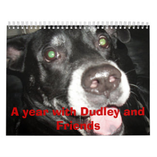 A year with Dudley and Friends Calendar