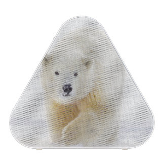 A yearling polar bear cub plays in the snow bluetooth speaker