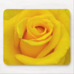 A yellow rose of friendship mouse pad