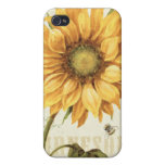 A Yellow Sunflower iPhone 4 Cases