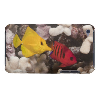 A Yellow Tang Barely There iPod Cases