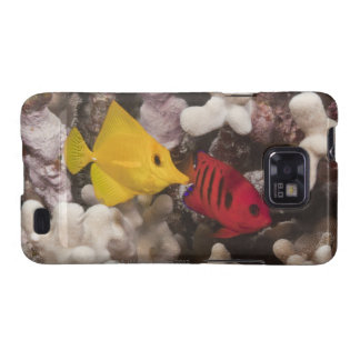 A Yellow Tang Galaxy SII Cover