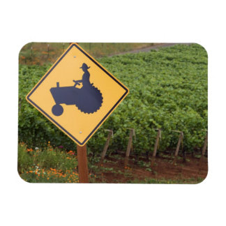 A yellow tractor crossing sign in the vineyard magnet