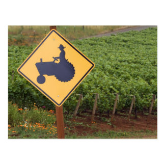 A yellow tractor crossing sign in the vineyard postcard
