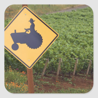 A yellow tractor crossing sign in the vineyard square sticker