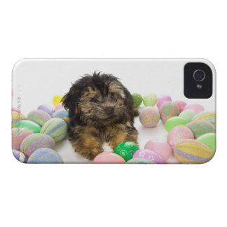 A Yorkie-poo puppy and Easter eggs. Case-Mate iPhone 4 Case